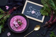 Sopa de beterrabas do vegetariano com as flores Vista superior Copie o espaço Fotos de Stock Royalty Free
