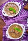 Sopa de champiñones con la patata Imagen de archivo libre de regalías
