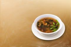 Sopa de champiñones con las hierbas Foto de archivo libre de regalías