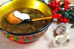Sopa de cogumelo Fotografia de Stock
