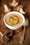 Sopa de cogumelo Fotos de Stock Royalty Free
