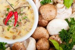 Sopa de cogumelo Imagens de Stock