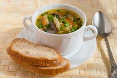 Sopa de cogumelo Imagem de Stock