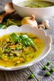 Sopa de cogumelo com cenoura, ervilha, couve, salsa, aipo e cebola Fotos de Stock Royalty Free