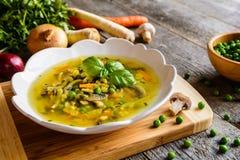 Sopa de cogumelo com cenoura, ervilha, couve, salsa, aipo e cebola Imagens de Stock Royalty Free