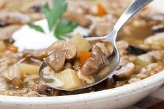 Sopa de cogumelo com cevada de pérola em uma colher Fotografia de Stock