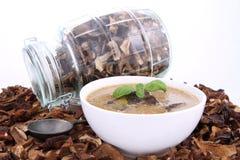 Sopa de cogumelo e cogumelos secados Fotografia de Stock