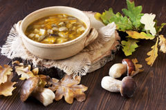 Sopa de cogumelo no prato cerâmico Fotografia de Stock