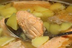 Sopa de color salmón Imagenes de archivo
