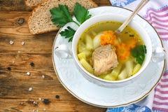 Sopa de color salmón de los pescados con las zanahorias y el primer de las patatas Foto de archivo libre de regalías