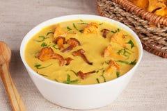 Sopa de creme com dos cogumelos estilo do russo da vida ainda Fotos de Stock