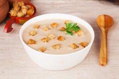 Sopa de creme com pão torrado em um estilo imóvel do russo da vida Foto de Stock