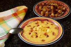 Sopa de creme da batata e do alho-porro Imagens de Stock Royalty Free