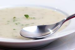 Sopa de creme da couve-flor Foto de Stock