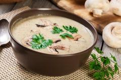 Sopa de creme do cogumelo com ervas e especiarias fotos de stock royalty free