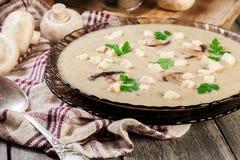 Sopa de creme do cogumelo com pão torrado e especiarias imagem de stock royalty free