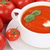 Sopa de creme do tomate com os tomates em comer saudável da bacia Imagens de Stock Royalty Free