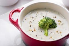 Sopa de creme dos brócolos Fotografia de Stock