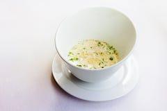 Sopa de creme em uma placa branca profunda Imagem de Stock