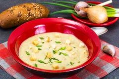 Sopa de creme vegetal com pão torrado Fotos de Stock Royalty Free