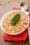 Sopa de feijões Fotografia de Stock