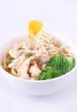 Sopa de fideos clara del pollo con wonton. Fotos de archivo