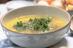 Sopa de fideos del pollo con las zanahorias y el perejil Fotografía de archivo libre de regalías