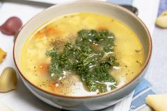 Sopa de fideos del pollo con las zanahorias y el perejil fotos de archivo