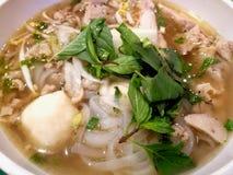 Sopa de fideos vietnamita del pollo de Pho GA Fotos de archivo