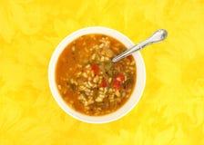 Sopa de galinha com os vegetais na bacia branca com sp Fotografia de Stock