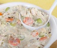 Sopa de galinha do serviço Foto de Stock Royalty Free