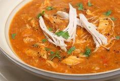 Sopa de galinha picante imagens de stock royalty free