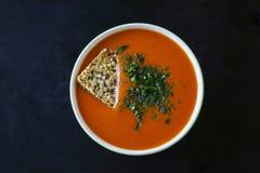 Sopa de Gazpacho foto de archivo libre de regalías