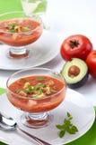 Sopa de Gazpacho Imagem de Stock