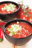 Sopa de Gazpacho Imagens de Stock Royalty Free