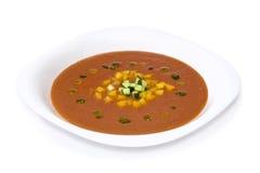 Sopa de Gazpacho Fotografía de archivo