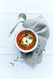 Sopa de Gazpacho com queijo creme e salsa fresca Imagens de Stock Royalty Free