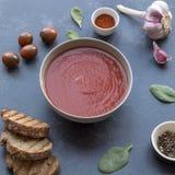 Sopa de Gazpacho con los ingredientes fotografía de archivo