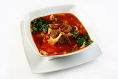 Sopa de goulash Imagem de Stock