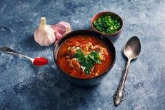 Sopa de Kharcho - plato georgiano nacional de la cocina con carne de vaca, arroz, ajo y tkemali Comida cauc?sica aut?ntica tradic fotografía de archivo