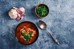 Sopa de Kharcho - plato georgiano nacional de la cocina con carne de vaca, arroz, ajo y tkemali Comida cauc?sica aut?ntica tradic foto de archivo