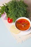 Sopa de Kharcho servida con los vehículos y el verde Imagen de archivo