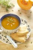 Sopa de la calabaza Imagen de archivo libre de regalías