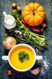 Sopa de la calabaza con los ingredientes frescos Fotografía de archivo libre de regalías