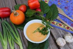 Sopa de la calabaza en el cuenco blanco con las verduras imagen de archivo