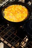 Sopa de la calabaza y de patata dulce Fotografía de archivo