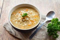 Sopa de la cebada Imagenes de archivo