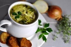 Sopa de la cebolla Foto de archivo libre de regalías