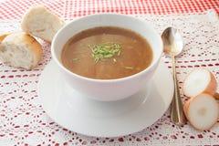 Sopa de la cebolla Foto de archivo