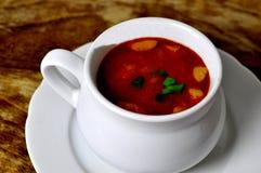 Sopa de la col Foto de archivo libre de regalías